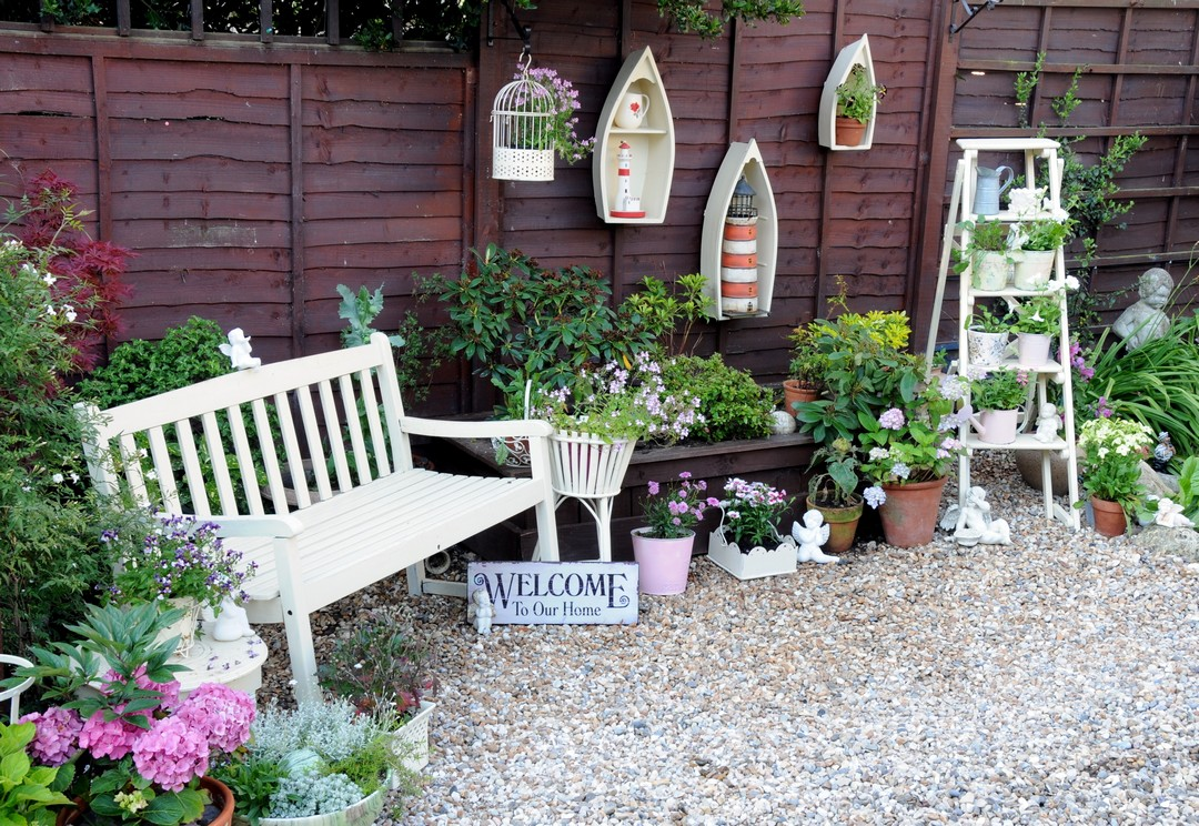 plantes petit jardin