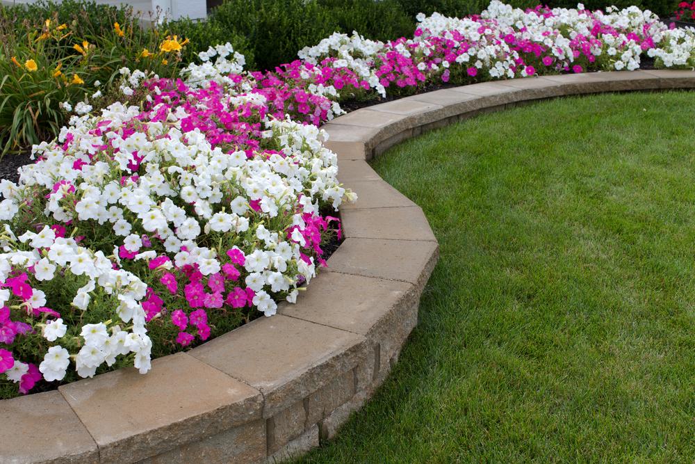 Aménager des bordures de jardin