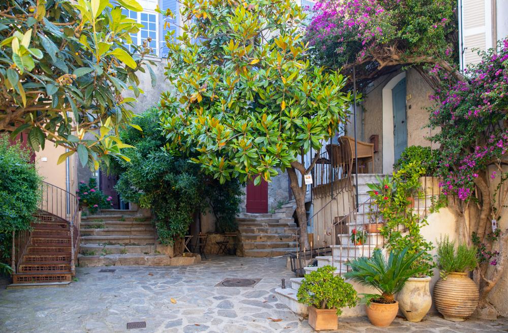 Transformer une cour en petit jardin